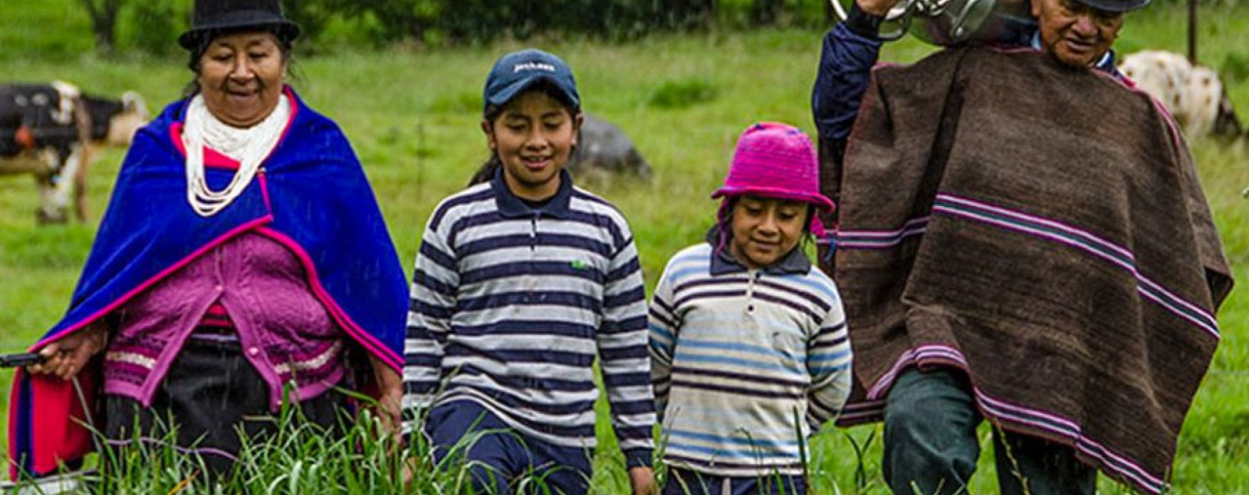 90 organizaciones se postularon al Premio Transformadores de RedEAmérica