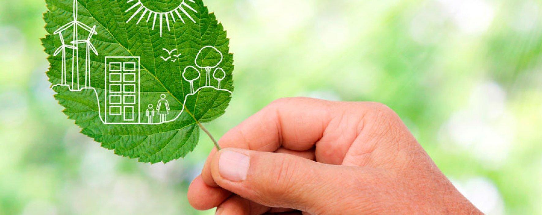 Compañías preocupadas por ser sostenibles ambientalmente