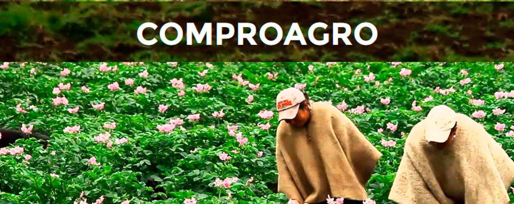 Comproagro: Iniciativa social de paz