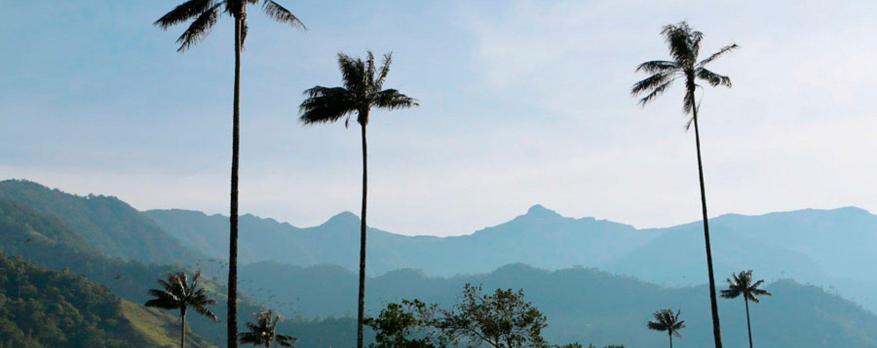 """""""El 30 % de nuestra biodiversidad está en riesgo si no cambiamos"""": Minambiente"""