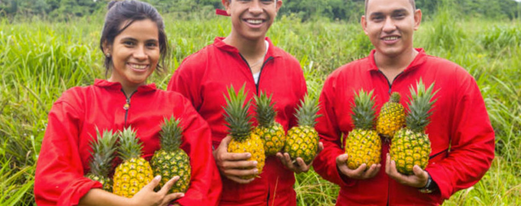 En marcha programa de becas para jóvenes campesinos en Casanare