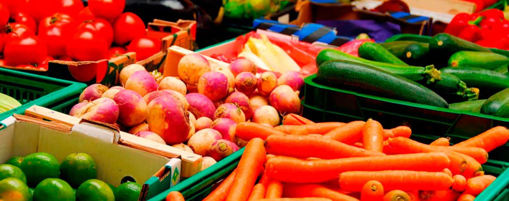 Exportaciones repuntan 14,6% en enero por productos agropecuarios y manufacturas