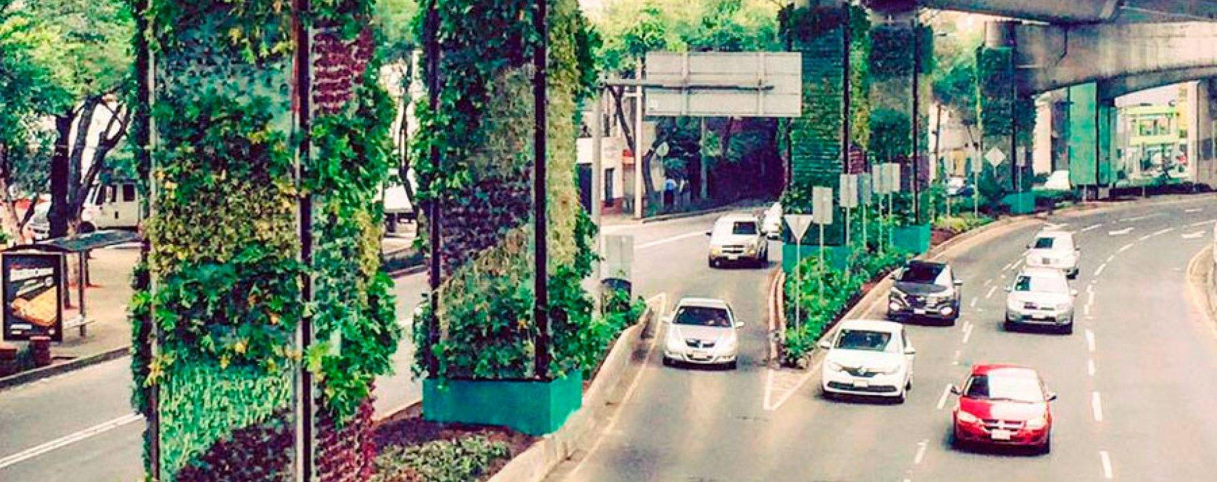 Jardines verticales darán oxígeno a Ciudad de México