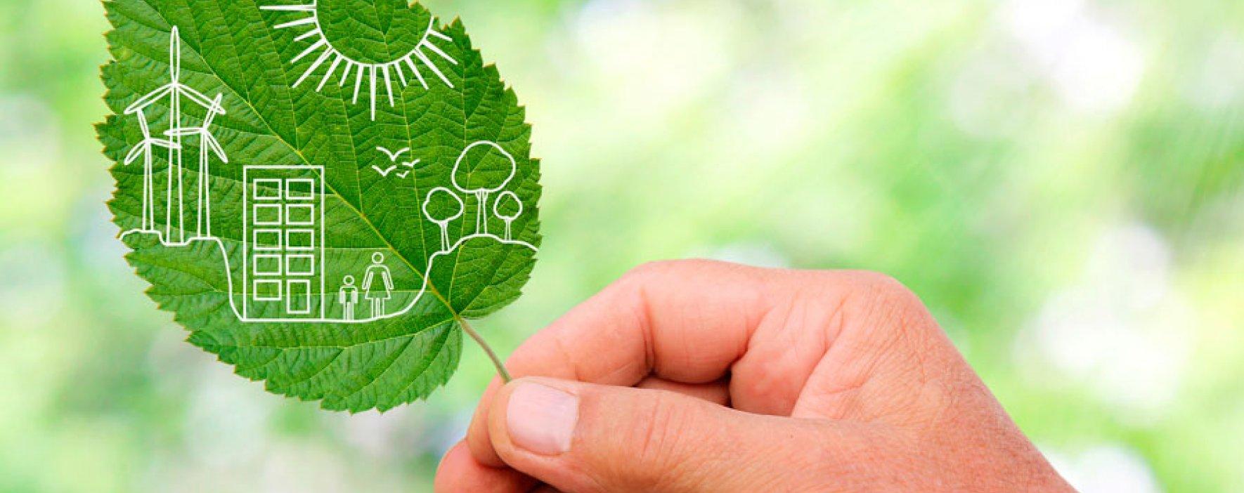 Solución para que las empresas le retribuyan al ambiente