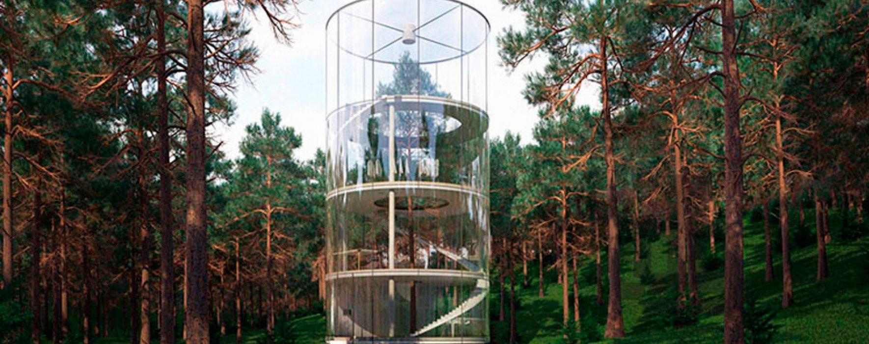 Tree in the house, una construcción inmersa en la naturaleza