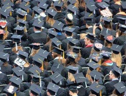 $83 mil millones para capacidad institucional e investigación en Educación Superior
