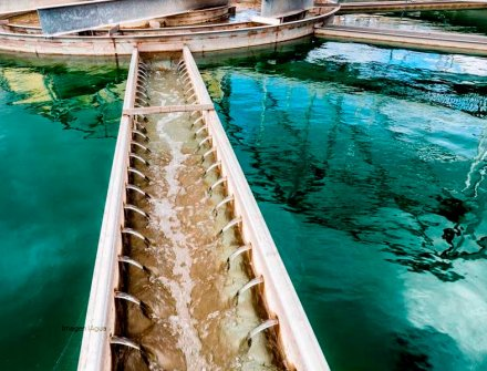 Agua potable mediante la desalinización solar