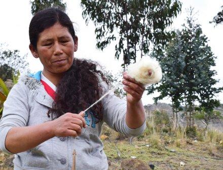 Artesanos de Cucunubá