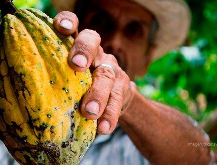 Campo justo, innovación para la reducción de desigualdades en el campo colombiano