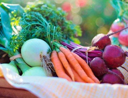 Con $47 mil millones, MinAgricultura fortalecerá emprendimientos de familias rurales