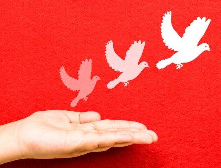Encuentros Regionales AFE: para construir alianzas por la paz y algo