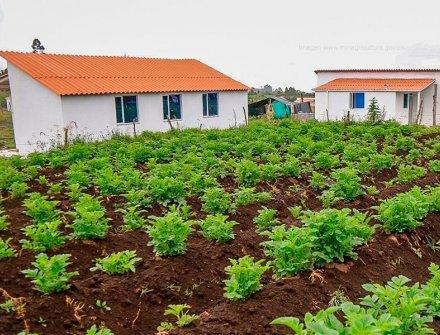 Gobierno asigna $202 mil millones para vivienda rural en 2019