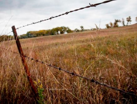 Ordenar y medir la tierra, clave para una paz duradera