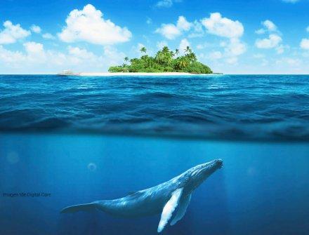 ¡Salvemos los océanos!