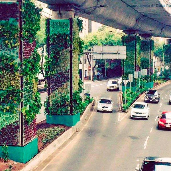 Jardines verticales dar n ox geno a ciudad de m xico for Jardines verticales mexico