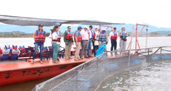 Con crecimiento de 24%, la piscicultura jalona exportaciones agropecuarias: MinAgricultura