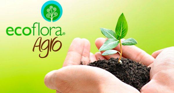 Ecoflora Agro: una empresa que cuida al medio ambiente