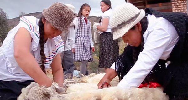 Fundación Compartir: 35 años trabajando por una sociedad más equitativa