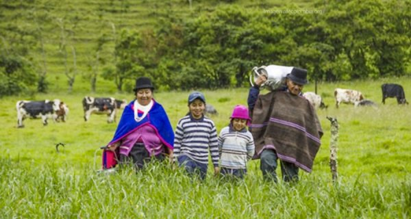 La Fundación Alpina y su trabajo alimentario en las poblaciones rurales del país
