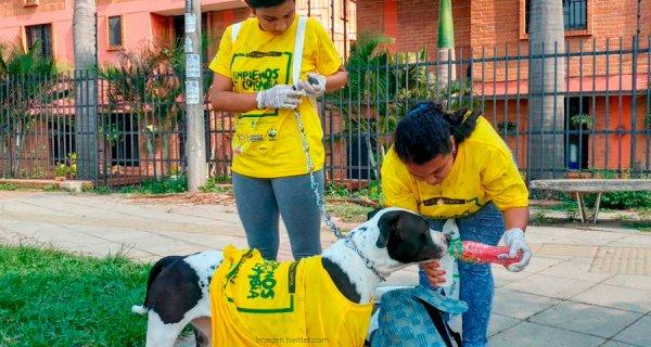 Mil ECOlombianos por un propósito: disminuir el consumo de bolsas plásticas en 2018