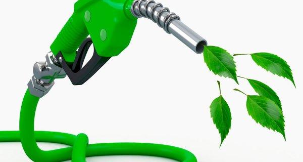 Proyecto de biocombustible creado por jóvenes colombianos