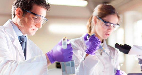 ¿Sabe en qué universidades del país hay más grupos de investigación?