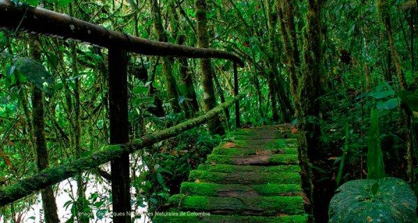Santuarios naturales que querrás visitar