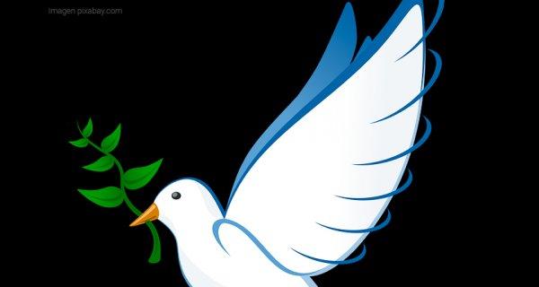 Un encuentro de prácticas educativas que le apuestan a la paz